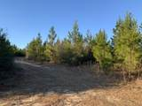 20 AC Munson Hwy - Photo 2