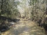 60 acres Long Road - Photo 10