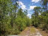 5. 6 acres Mallett Bayou Rd - Photo 36