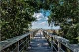 2465 Bungalo Lane - Photo 53