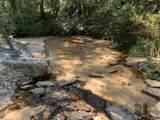 TBD Meander Creek Lane - Photo 41