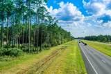 .59 Acres Us Highway 331 S - Photo 7
