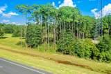 .59 Acres Us Highway 331 S - Photo 8