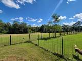683 Pinewood Drive - Photo 13