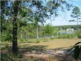 LOT 4 Magnolia Lake Drive - Photo 7
