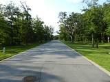 22 Baygrove Boulevard - Photo 8