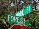 205 Thyme Street - Photo 1