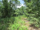 49.2 Acres Hinote Road - Photo 10