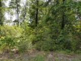 49.2 Acres Hinote Road - Photo 16