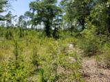 49.2 Acres Hinote Road - Photo 17