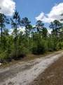 5. 6 acres Mallett Bayou Road - Photo 11