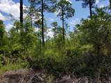 5. 6 acres Mallett Bayou Road - Photo 17