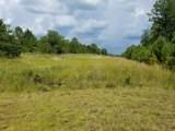 40 Acres Elam Road - Photo 12