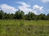 40 Acres Elam Road - Photo 20
