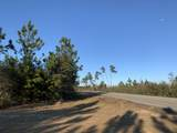 20 AC Munson Hwy - Photo 1