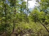 5. 6 acres Mallett Bayou Road - Photo 14