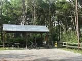 104 Cypress Breeze Drive - Photo 54