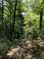 5.49 Acres White Oak Drive - Photo 10