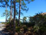 1339 Driftwood Point Road - Photo 6