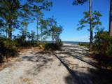 1339 Driftwood Point Road - Photo 7