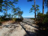 1339 Driftwood Point Road - Photo 9