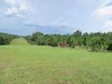 40 Acres Elam Road - Photo 6