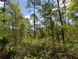 5. 6 acres Mallett Bayou Rd - Photo 14