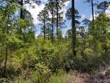 5. 6 acres Mallett Bayou Rd - Photo 18
