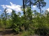 5. 6 acres Mallett Bayou Rd - Photo 19
