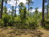 5. 6 acres Mallett Bayou Rd - Photo 6