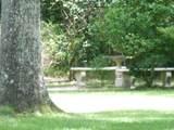 6167 Old Bethel Road - Photo 10