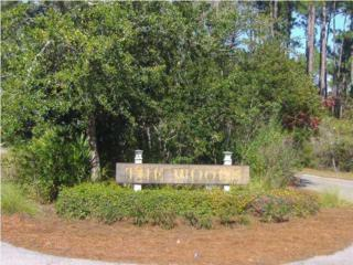 lot 5 Still Oaks, Point Washington, FL 32459 (MLS #745157) :: The Premier Property Group