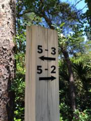 5-2 Post Lane, Santa Rosa Beach, FL 32459 (MLS #752922) :: Scenic Sotheby's International Realty