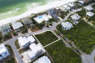 74 St Lucia Lane, Santa Rosa Beach, FL 32459 (MLS #761231) :: Scenic Sotheby's International Realty