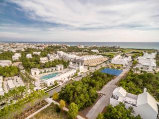 141 N Somerset Street, Alys Beach, FL 32461 (MLS #764078) :: Scenic Sotheby's International Realty