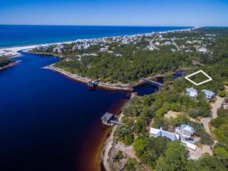 12-2 Wood Lily Lane, Santa Rosa Beach, FL 32459 (MLS #766146) :: Scenic Sotheby's International Realty