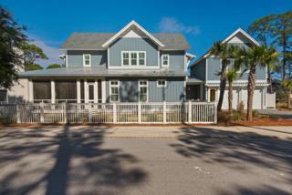 56 Half Hitch Lane, Santa Rosa Beach, FL 32459 (MLS #767966) :: The Premier Property Group