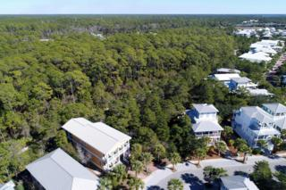Inlet Beach, FL 32461 :: Somers & Company