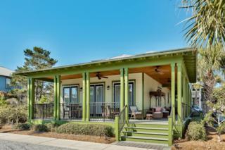 360 Beach Bike Way, Inlet Beach, FL 32461 (MLS #768429) :: Somers & Company