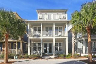 466 Beach Bike Way, Seacrest, FL 32461 (MLS #769032) :: Somers & Company