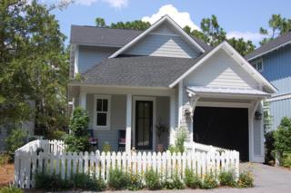 173 Anchor Rode Circle, Santa Rosa Beach, FL 32459 (MLS #769158) :: The Premier Property Group