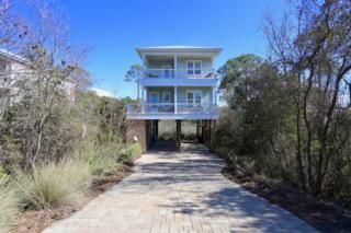 1101 Allen Loop Drive, Santa Rosa Beach, FL 32459 (MLS #769187) :: Scenic Sotheby's International Realty