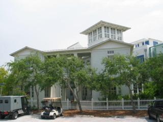 201 Smolian Circle, Santa Rosa Beach, FL 32459 (MLS #769249) :: The Premier Property Group