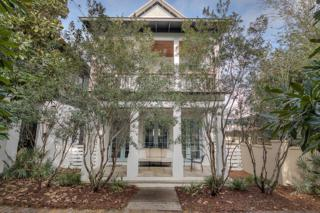 87 Bourne Lane, Inlet Beach, FL 32461 (MLS #769327) :: Scenic Sotheby's International Realty