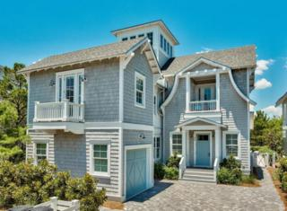 44 Tidepool Lane, Inlet Beach, FL 32461 (MLS #770084) :: Scenic Sotheby's International Realty