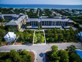 Lot #96 Cabana Trail, Santa Rosa Beach, FL 32459 (MLS #770290) :: Somers & Company