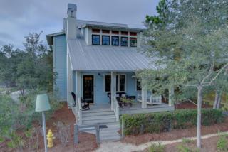 380 Spartina Circle, Santa Rosa Beach, FL 32459 (MLS #770614) :: Somers & Company