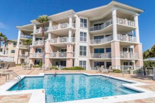164 Blue Lupine Way Unit 111, Santa Rosa Beach, FL 32459 (MLS #770663) :: Somers & Company