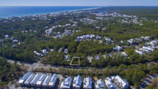 74 Royal Fern Way, Santa Rosa Beach, FL 32459 (MLS #771608) :: Somers & Company