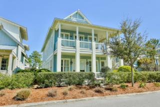 38 Blue Stem Lane, Santa Rosa Beach, FL 32459 (MLS #771646) :: Somers & Company